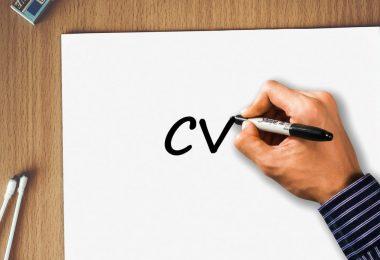 Cómo crear tu currículum si no tienes experiencia laboral